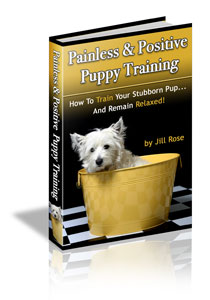 Painless & Positive Puppy Training