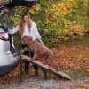 Free Standing Extra Wide Pet Ramp