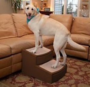 Easy Step II Extra Wide Pet Stairs
