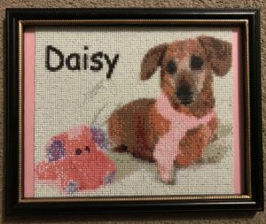 Daisy's Doggy Adult Coloring Pages