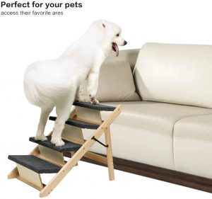 2-in-1 Foldable Dog Stairs & Ramp